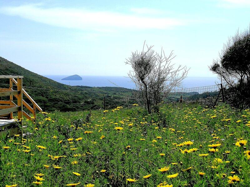 Erbe Matte Agriturismo a Sant'Antioco, location de vacances à Province of Carbonia-Iglesias