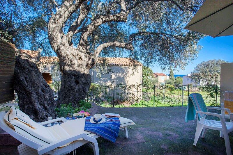 Domaine Bollaccia - Casa Caruchettu, vacation rental in Monticello