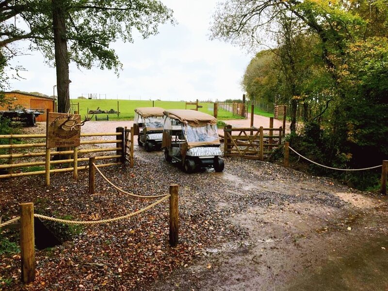 Luxury Safari Lodge surrounded by deer!! 'Fallow', holiday rental in Crediton