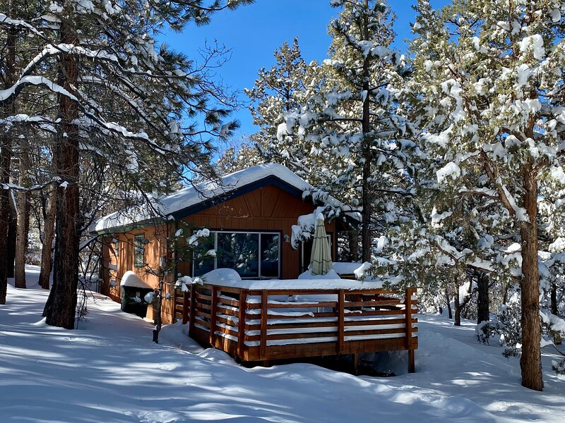 Alpine Whiskey Lodge, vacation rental in Sugarloaf