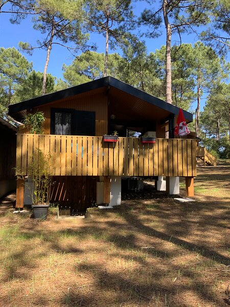 Chalet Carcans Maubuisson, vacation rental in Carcans