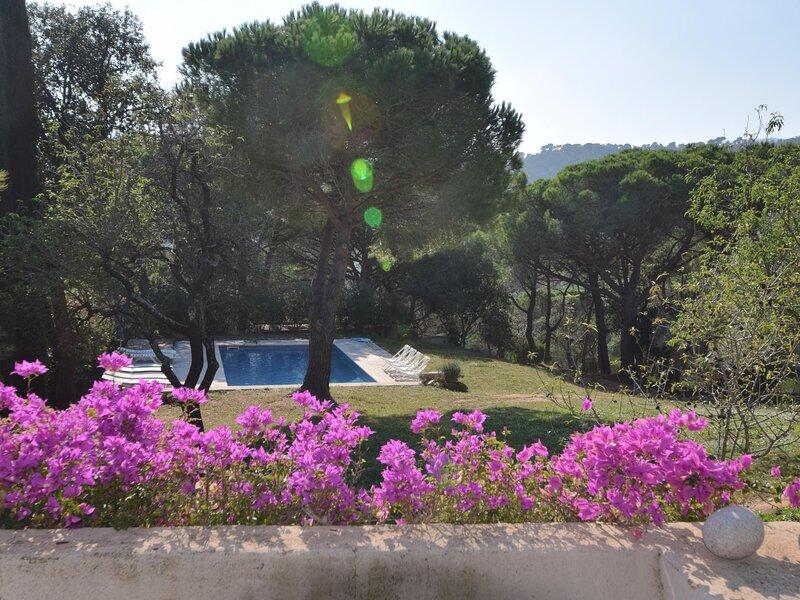 MAS BARTRA, PRIVATE POOL, BIG PLOT, holiday rental in Solius