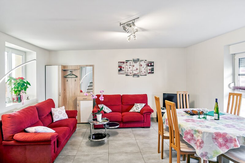 Amazing house with garden & terrace, vacation rental in Ebersmunster