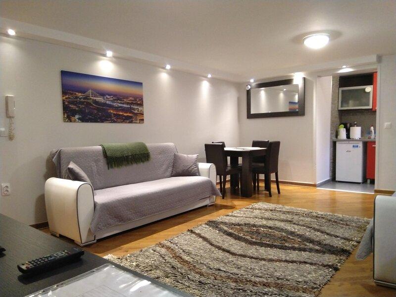 Apartment Dedinje - entire one bedroom apartment, Ferienwohnung in Obrenovac