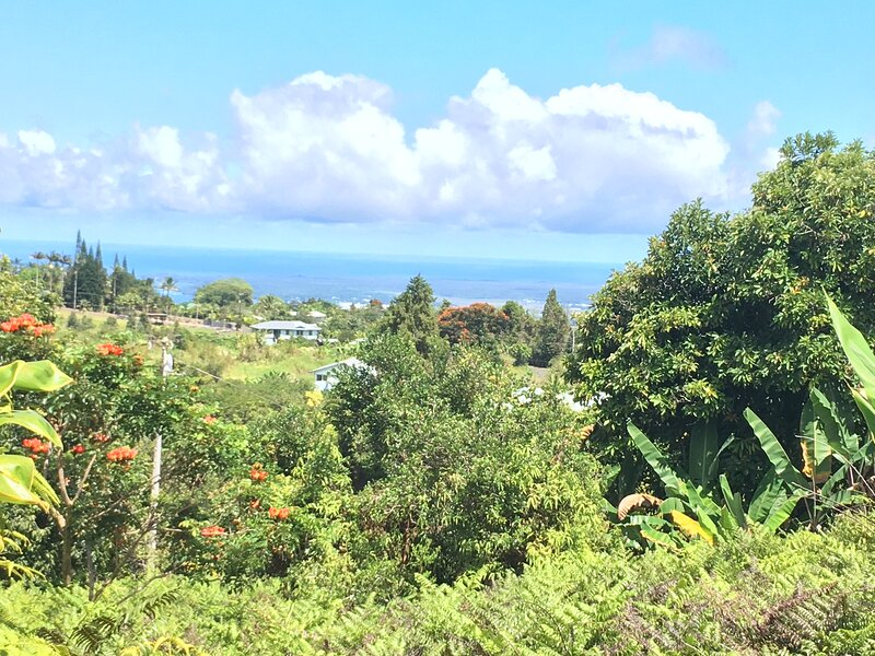 Hale Ilio Himeni -- Ocean Views and Cool Mountain Breezes, vacation rental in Honomu