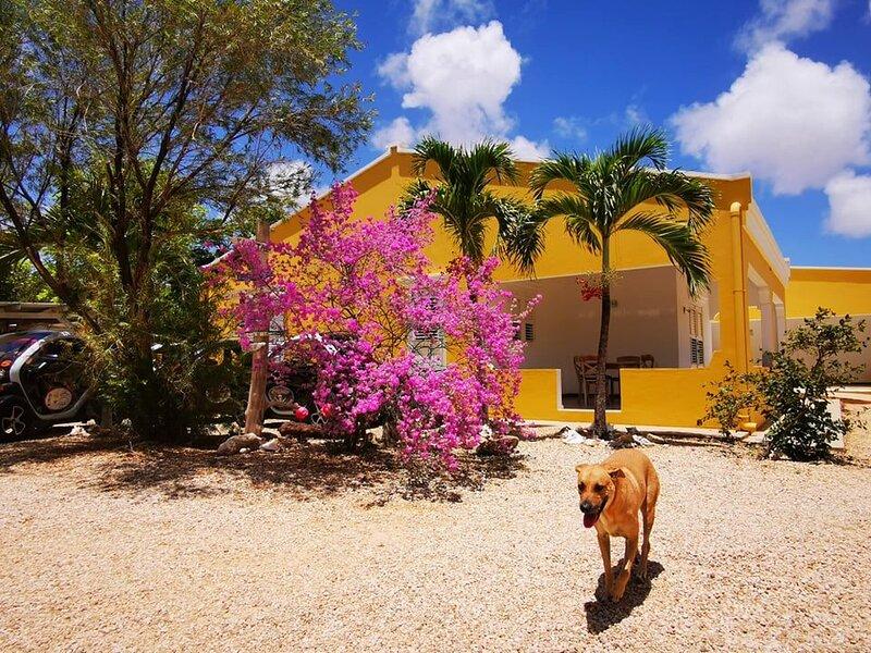 Roadrunner Bonaire - Kralendijk, alquiler vacacional en Kralendijk