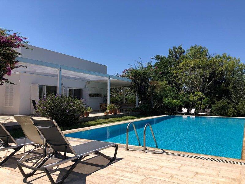 Casa Myndos - Modern & Specious Villa with private pool., casa vacanza a Derekoy