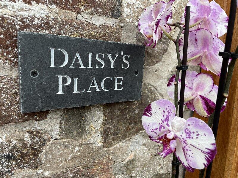 Daisy's Place