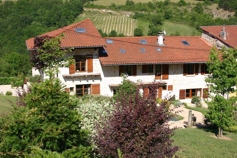Propriété à louer avec jardin paysagé et terrasse avec belle vue sur la vallée, holiday rental in Saint-Martin-du-Mont