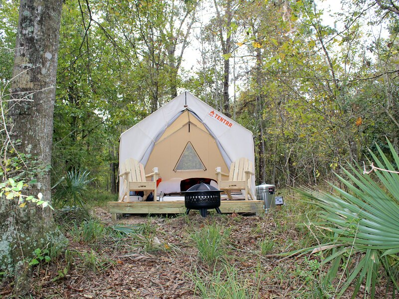 Tentrr State Park Site - Fontainebleau State Park Site D, holiday rental in Covington