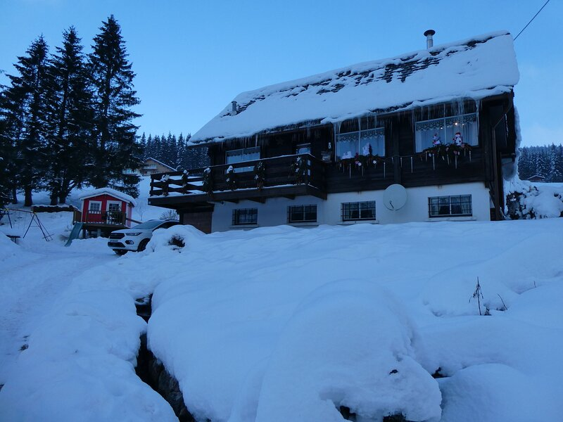 Chalet - 500 m from the slopes, holiday rental in Le Valtin