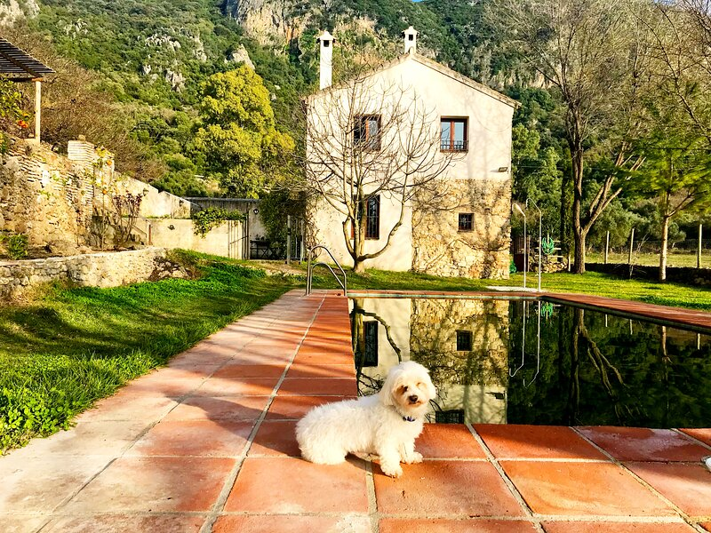 Eva Recommends Casa Rural 1 El Bosque B&B piscina, location de vacances à Benamahoma