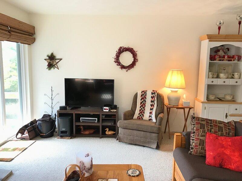 Living area flat screen tv