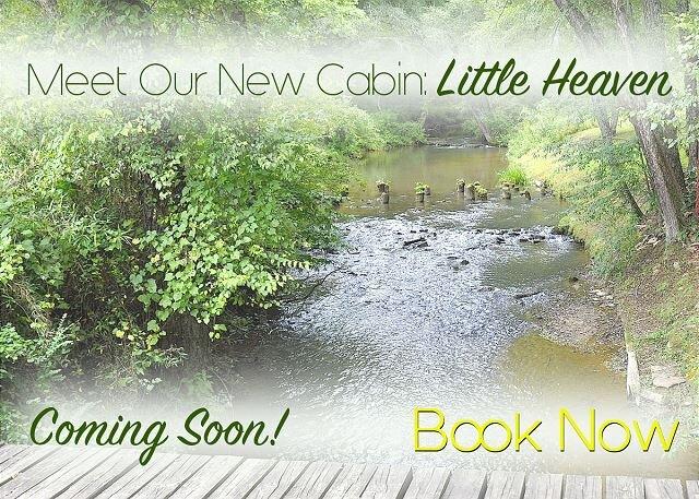 Little Heaven is that little, 4/3 on a Fishing Creek,Hot Tub like Heaven Soon, holiday rental in Warne
