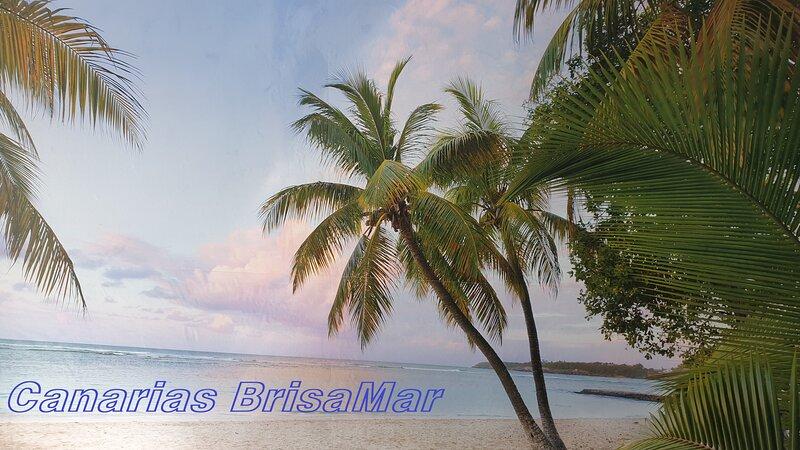 CanariasBrisaMar Apartamento Casa 1° línea de mar y sol, holiday rental in Playa de Arinaga