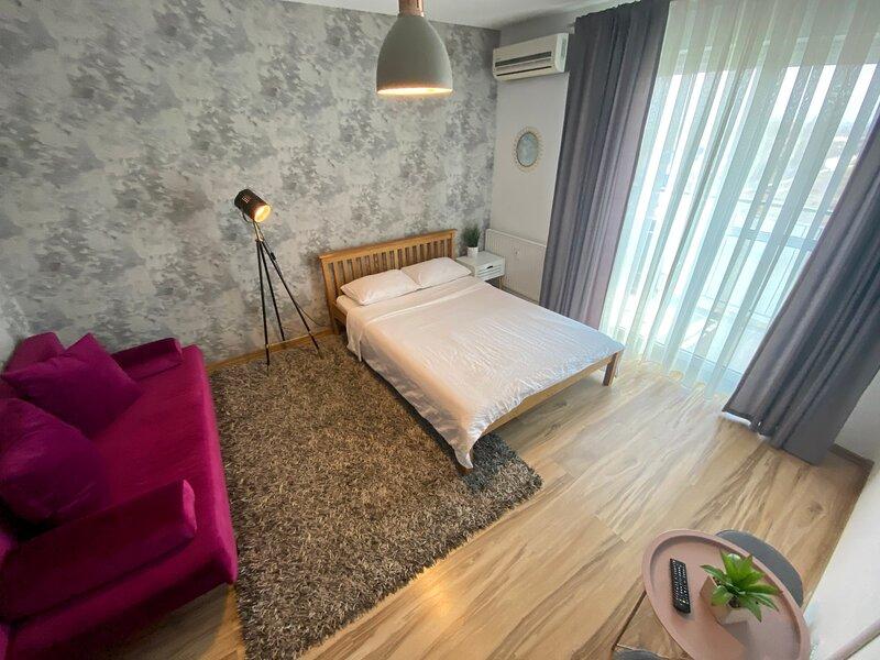 Oradea Gray Apartment, casa vacanza a Baile Felix
