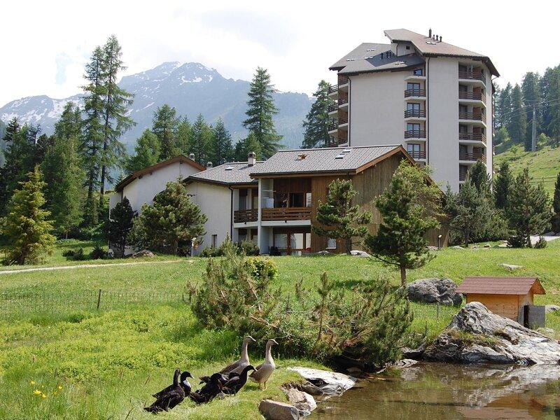 Montfort (SIV133), holiday rental in Siviez