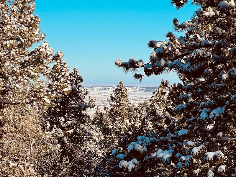 Owls Nest House, holiday rental in Belle Fourche