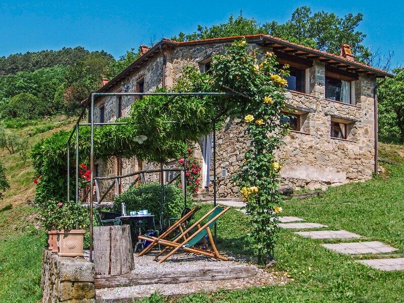 Fattoria di Pietrabuona (PCA109), holiday rental in Villa Basilica