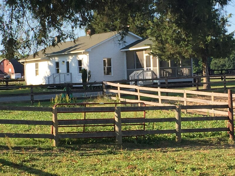 Milker's Cottage - Horses in the Bach Yard, holiday rental in Ruckersville