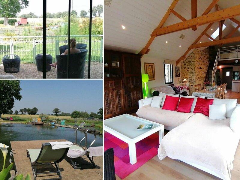 Gite de la Baignade Naturelle, holiday rental in Martigne-Ferchaud