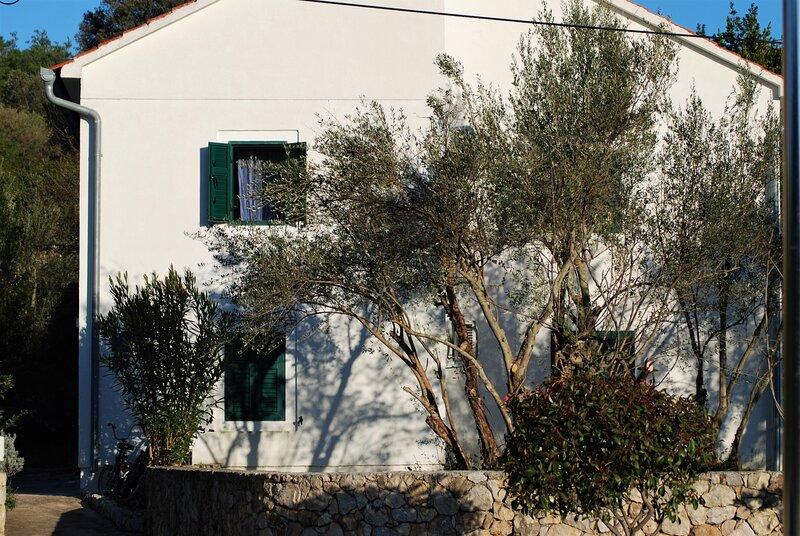 Rustic Villa Miketa- Detached Holiday home with private garden, alquiler vacacional en Lukoran