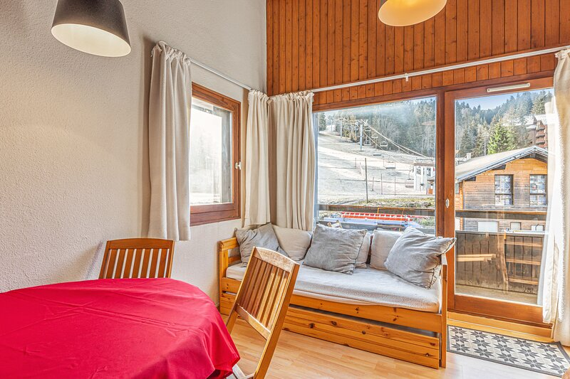 Apartment - 100 m from the slopes, vacation rental in Chatillon-sur-Cluses