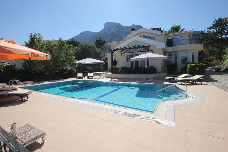 Villa 21 Luxury Villa with private pool and Barbeque House, holiday rental in Kormakitis