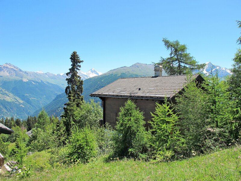 Grand Paradis, holiday rental in Thyon