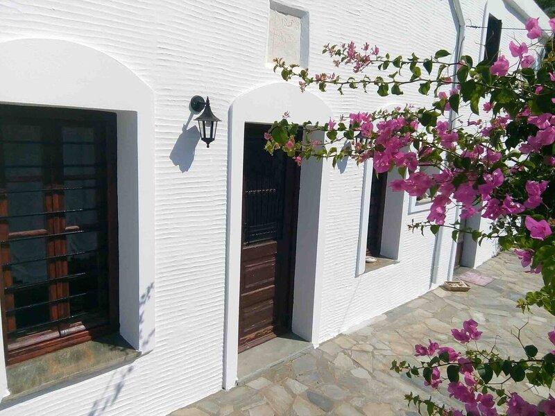 Old Stone Villa Palaiopolis Andros, casa vacanza a Ahla Beach
