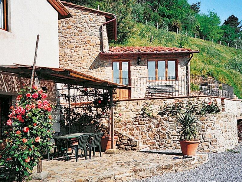 Fattoria di Pietrabuona (PCA112), holiday rental in Colognora