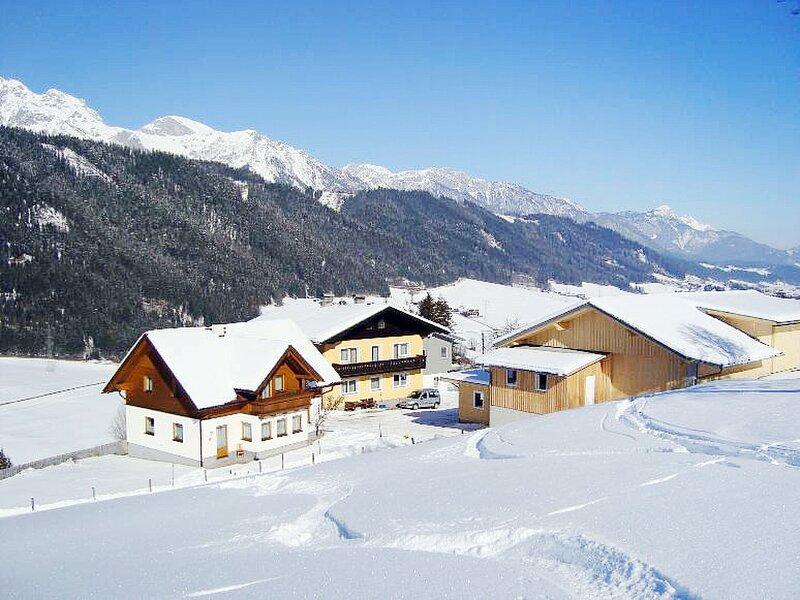 Pilz II (SLD510), holiday rental in Forstau