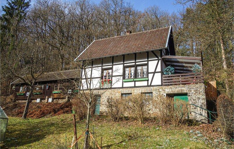 Amazing home in Heimbach with 1 Bedrooms (DEI175), location de vacances à Schleiden
