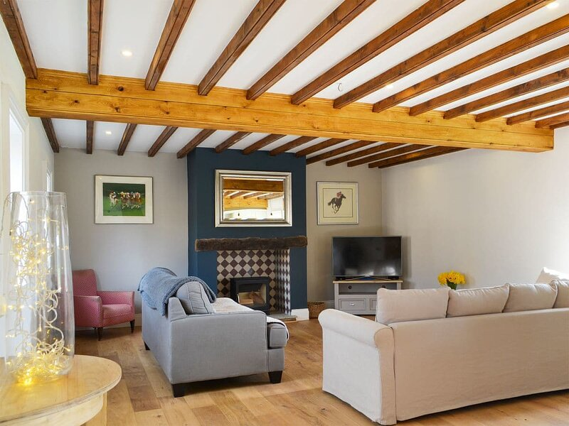 Martin Cottage - UK32941, holiday rental in Millington