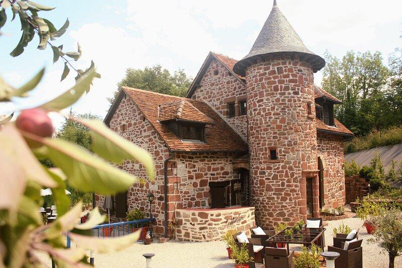 Moulin du 16ième siècle à Collonges la rouge avec son gîte (10 personnes), holiday rental in Tudeils