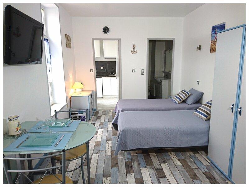 Studio meublé (location saisonnière à côté des Thermes), holiday rental in Vergeroux