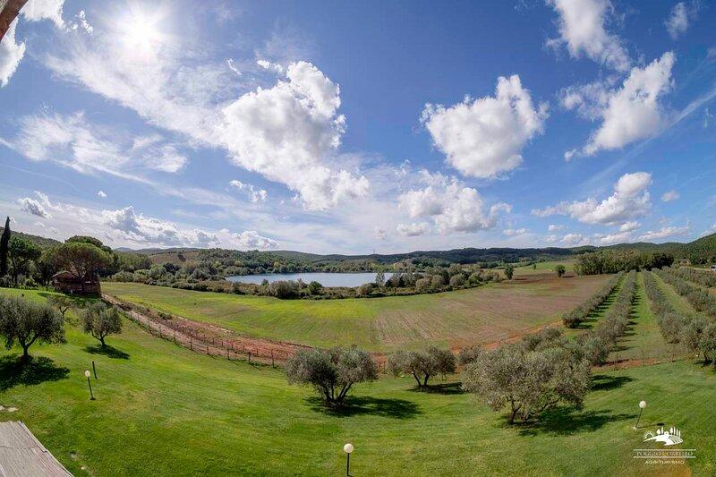 Tabaccaia App. Trilo Vista Lago 4 pax, vacation rental in La Pesta