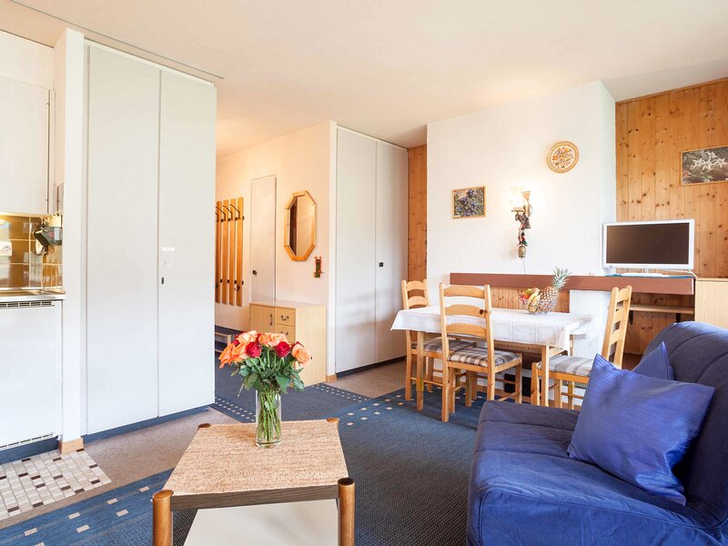 Résidence Arzinol, holiday rental in Thyon