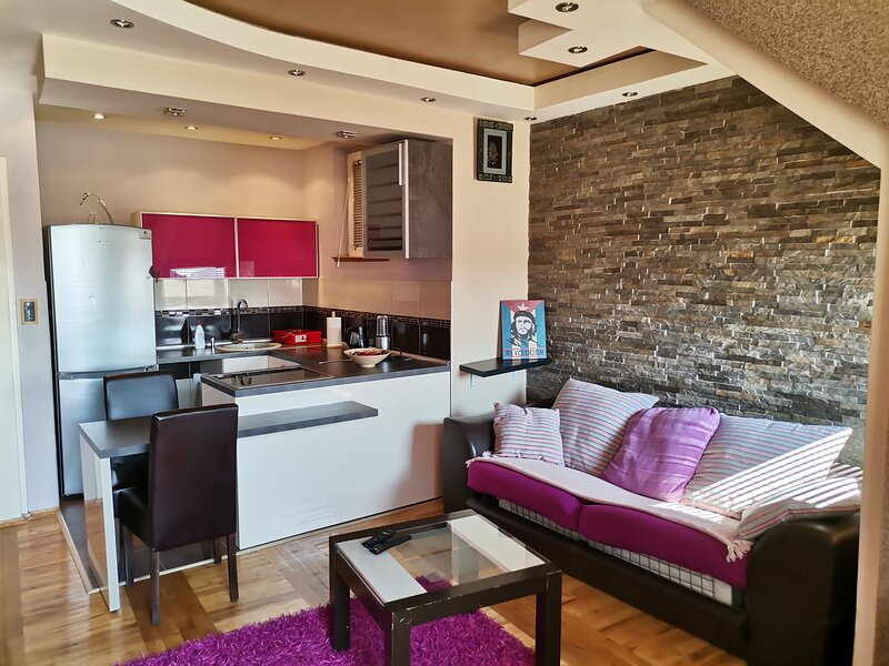 Impeccable 2-Bed Apartment in Novi Sad, holiday rental in Irig