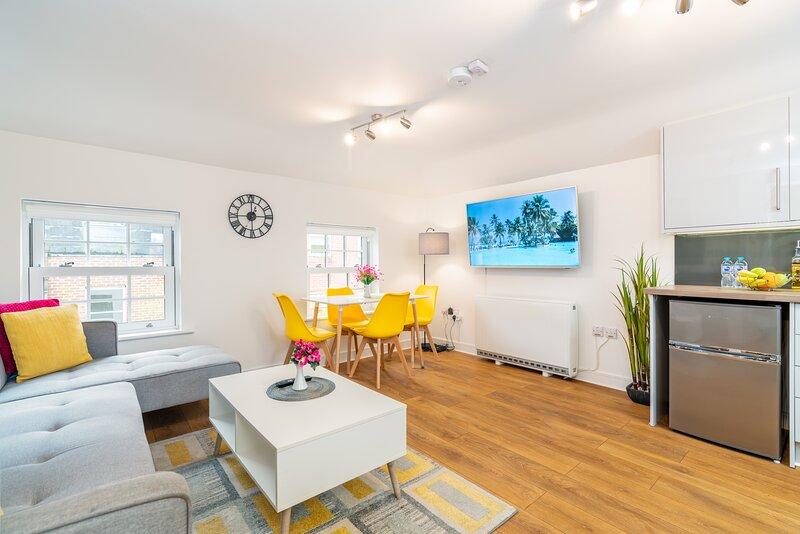 Town Center Apartment, 55'' Smart TV, Netflix, Amazon Prime TV, Super King Bed, location de vacances à Houghton
