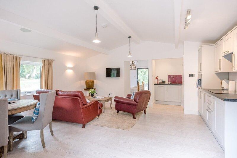Laurel Lodge Kingfishers (Air Manage Suffolk), holiday rental in Brandeston