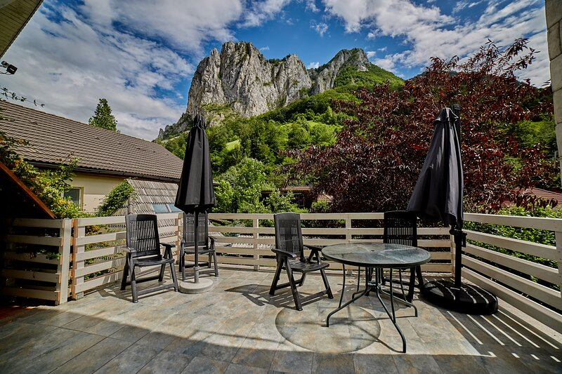 Relax in the middle of Transilvania, holiday rental in Baia de Aries