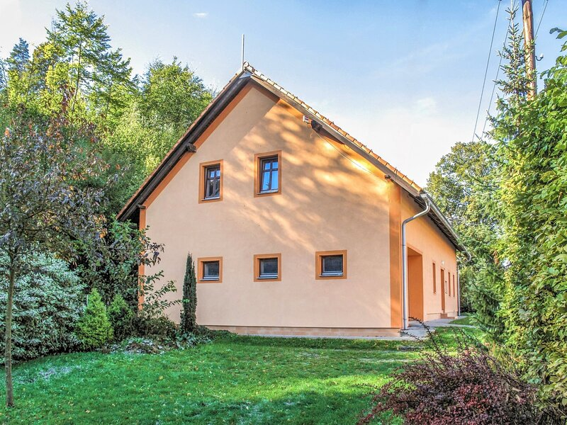 Petrovice, holiday rental in Pardubice Region
