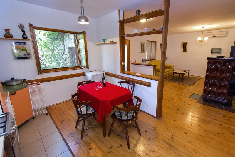 Holiday home 171036 - Private holiday home 182583, vacation rental in Valbandon