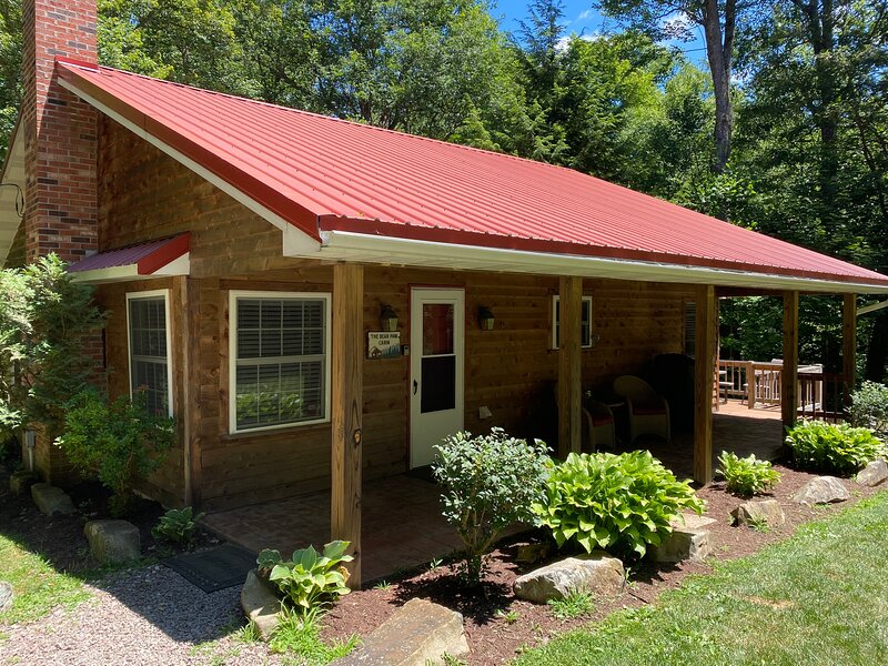 Bear Paw Cabin near Yough Lake Cozy, vacation rental in Confluence