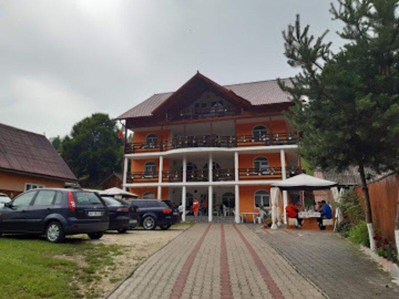 Impeccable 10-Bed Villa in Albac, vacation rental in Sulina