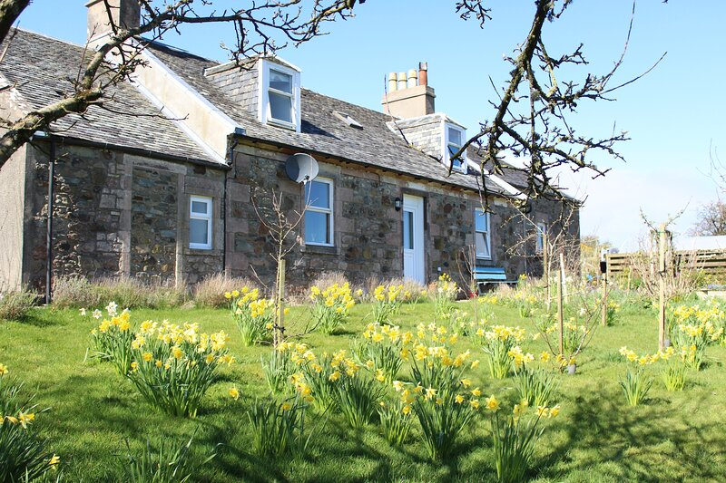 Ambrisbeg Cottage, Loch Quien, Isle of Bute, Scotland Perfect Staycation, vacation rental in Pirnmill