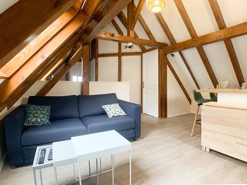 Appartement de charme avec garage, à 5mn du centre, vacation rental in Lingolsheim