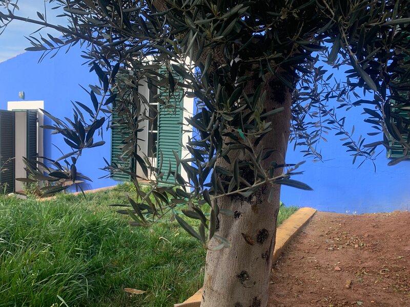 Casa dos Mangues | Blue Cottage, location de vacances à Cela