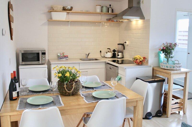 Spacious Family Home (2 - 7p), Free parking, vakantiewoning in Zandvoort